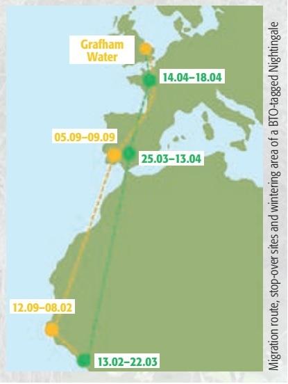 migration route