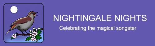 Nightingale Nights