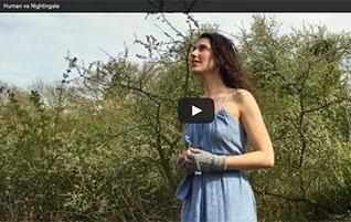 Ziazan Sings With Nightingale
